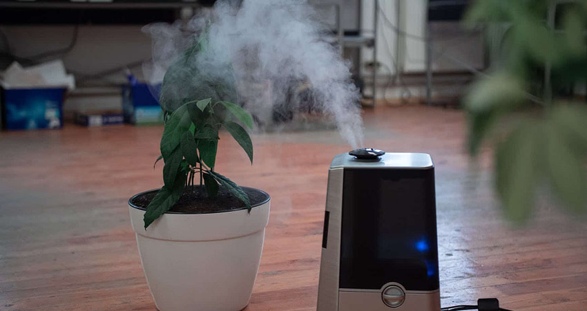 turned on air purifier on the floor near plant